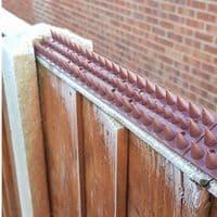 Fence Wall Spikes Garden Security Intruder Bird Cat Repellent Burglar Anti Climb with Wood Screws